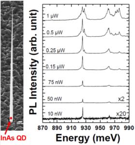 Image MEB d'un nanofil InP dont la géométrie a été optimisée pour guider la lumière émise par la boîte quantique InAs (QD). Spectres à basse température d'une boîte quantique insérée dans un nanofil en fonction de la puissance d'excitation.