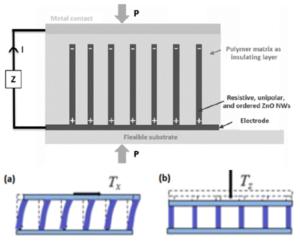 Schéma d'un capteur flexible à base de nanofils de ZnO et de polymère; a) mode cisaillement, b) mode compressif.